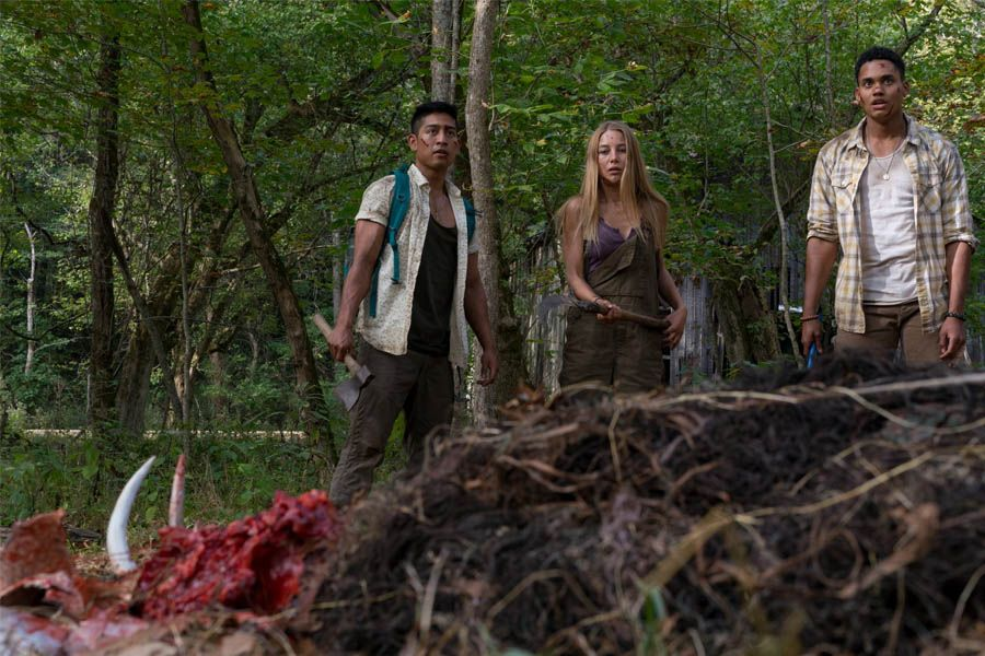 wrong-turn-the-foundation-critica